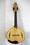 Mandolin Modell XF with Sycamore